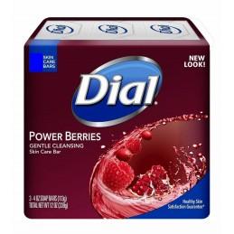 Dial Power Berries - UND 113g